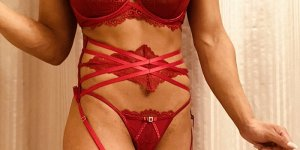 Syntyche escorts in Stoughton, casual sex